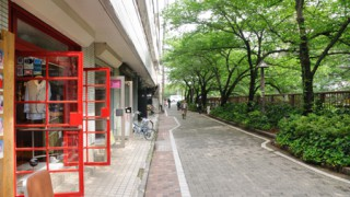 83003_megurogawa_06